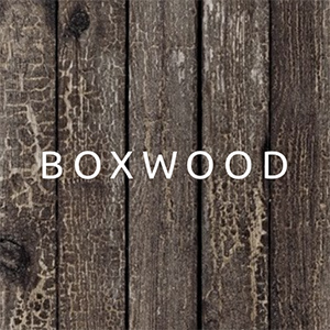 Boxwood Fashion